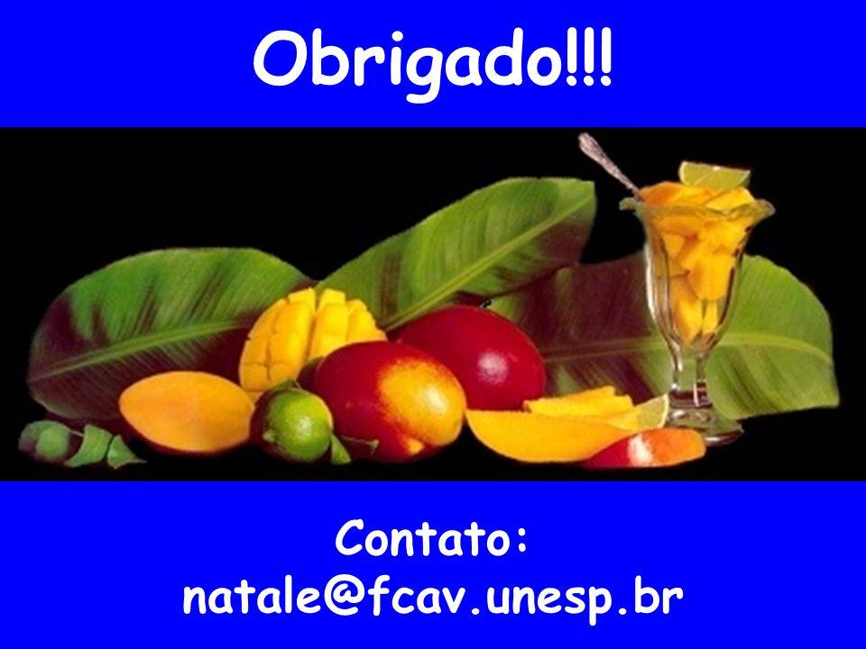 Obrigado!!! Contato: natale@fcav.unesp.br