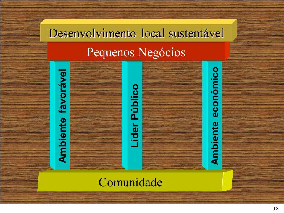 18 Ambiente favorável Líder Público Ambiente econômico Pequenos Negócios Desenvolvimento local sustentável Comunidade