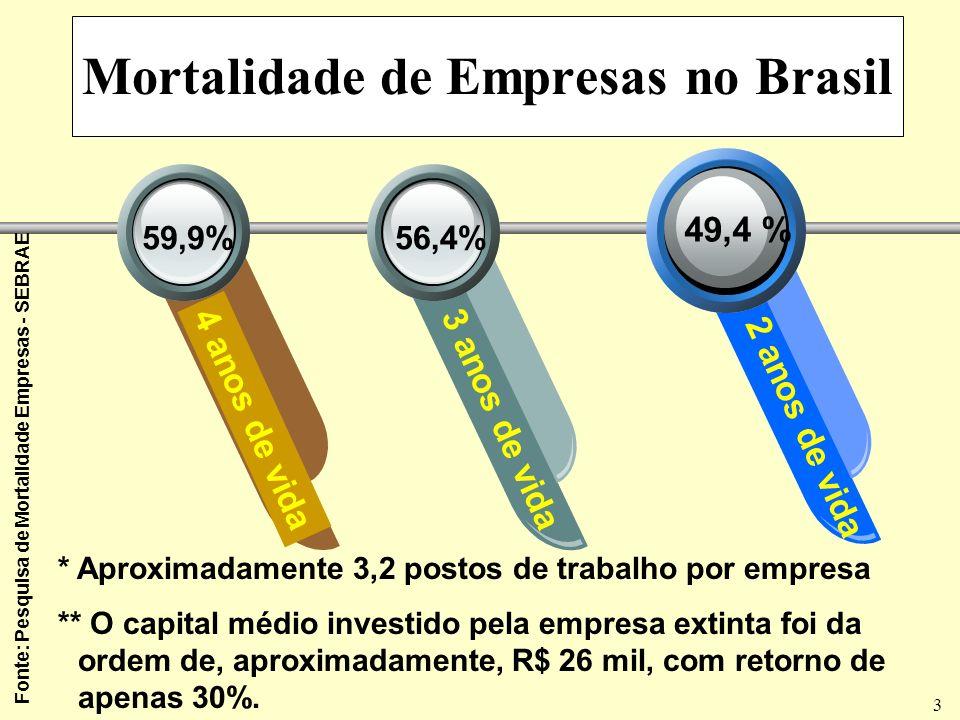 3 Mortalidade de Empresas no Brasil 49,4 % 4 anos de vida3 anos de vida 2 anos de vida 56,4%59,9% * Aproximadamente 3,2 postos de trabalho por empresa ** O capital médio investido pela empresa extinta foi da ordem de, aproximadamente, R$ 26 mil, com retorno de apenas 30%.