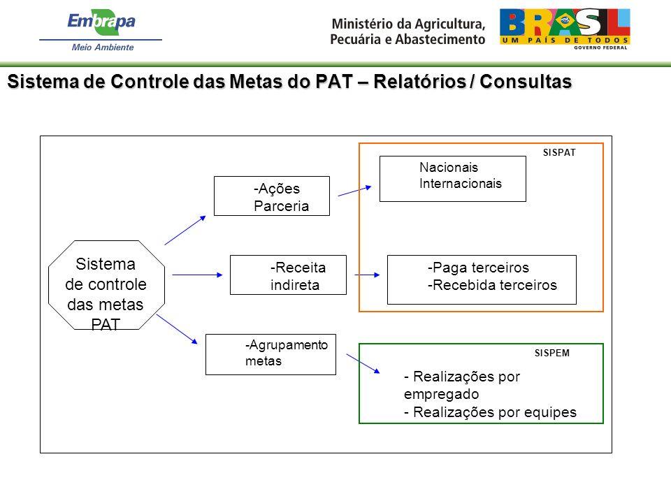 Sistema de Controle das Metas do PAT – Relatórios / Consultas Sistema de controle das metas PAT -Ações Parceria Nacionais Internacionais - Realizações