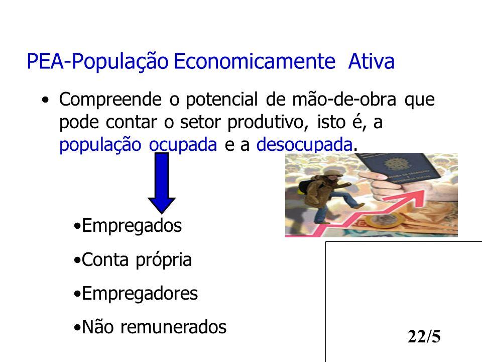 22/5 PEA-População Economicamente Ativa Compreende o potencial de mão-de-obra que pode contar o setor produtivo, isto é, a população ocupada e a desoc