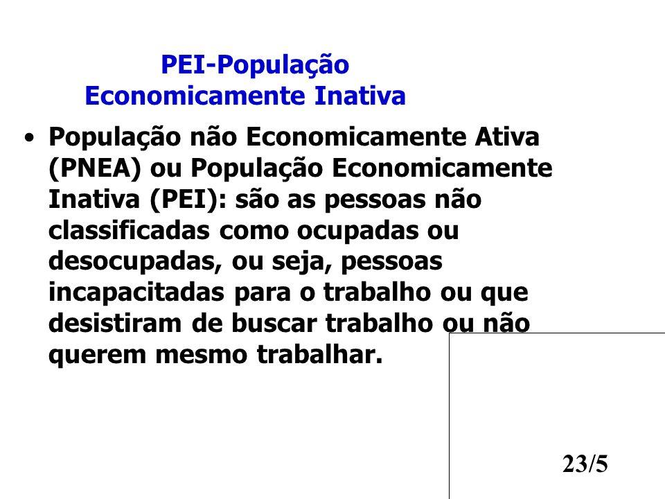 23/5 População não Economicamente Ativa (PNEA) ou População Economicamente Inativa (PEI): são as pessoas não classificadas como ocupadas ou desocupada
