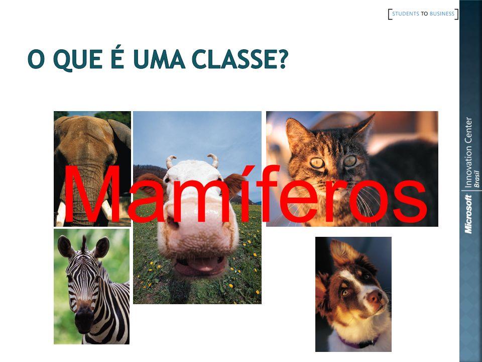 A classe abstrata Animal terá as seguintes particularidades : Propriedades Nome, para identificar um Animal.