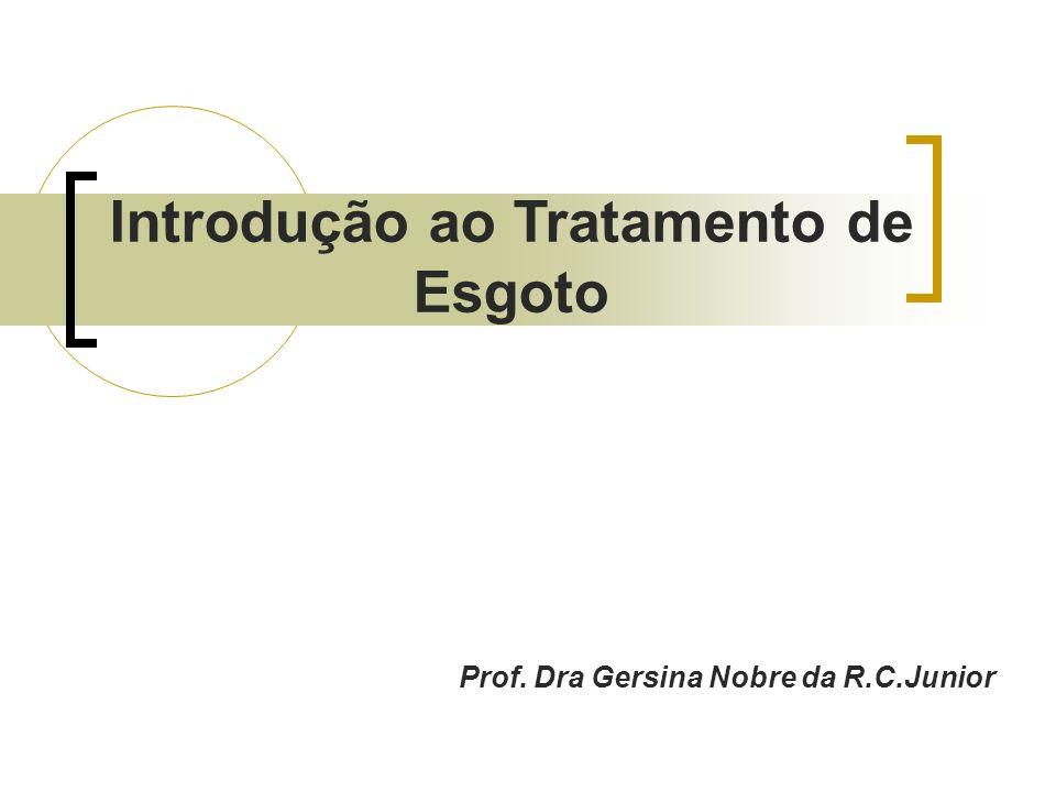 Introdução ao Tratamento de Esgoto Prof. Dra Gersina Nobre da R.C.Junior