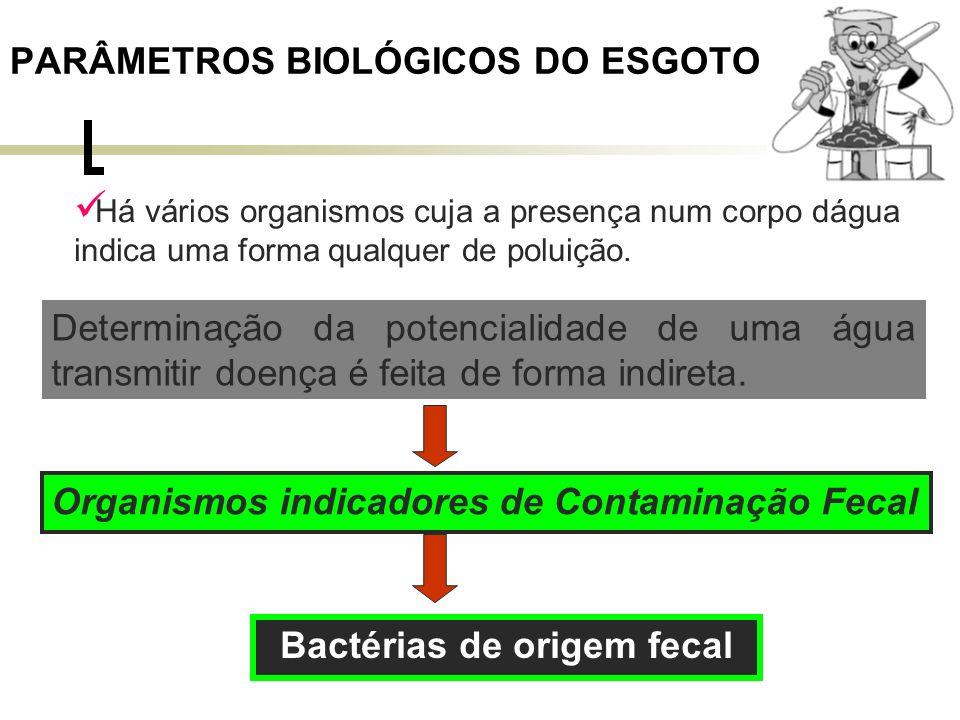 PARÂMETROS BIOLÓGICOS DO ESGOTO Bactérias de origem fecal Típicas do intestino do homem e de outros animais de sangue quente (mamíferos em geral).