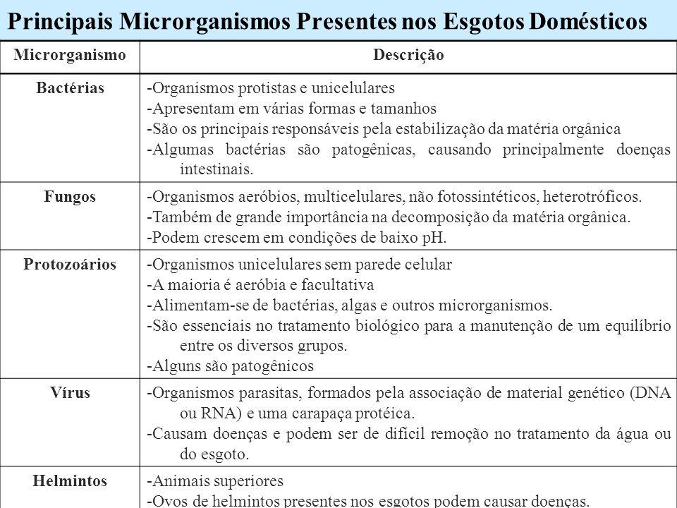 Principais Microrganismos Presentes nos Esgotos Domésticos MicrorganismoDescrição Bactérias-Organismos protistas e unicelulares -Apresentam em várias