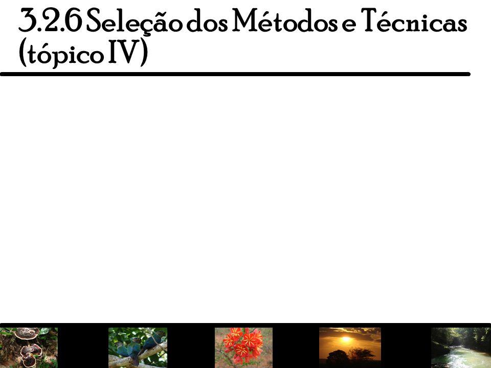 14 3.2.6 Seleção dos Métodos e Técnicas (tópico IV)