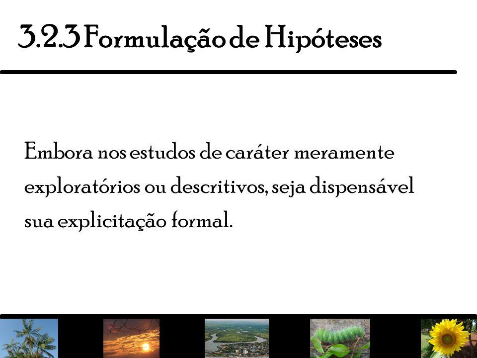 6 Termo originário do mundo das ciências naturais em que as experiências estão sempre presentes.