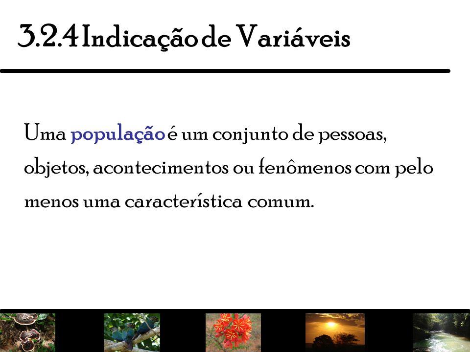 7 3.2.4 Indicação de Variáveis Uma população é um conjunto de pessoas, objetos, acontecimentos ou fenômenos com pelo menos uma característica comum.