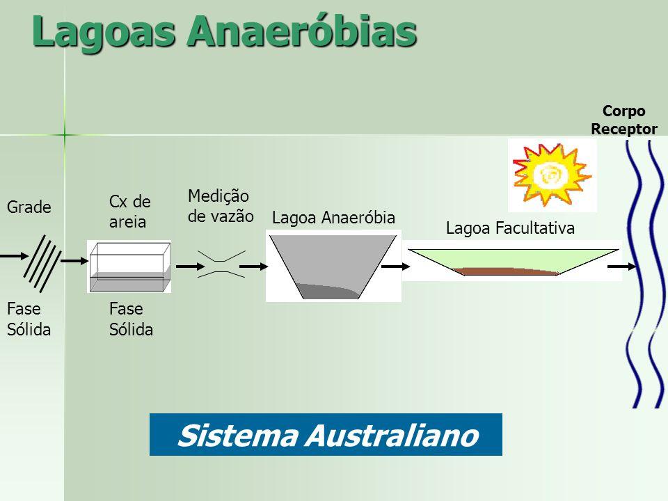 Lagoas Anaeróbias Grade Fase Sólida Fase Sólida Cx de areia Medição de vazão Lagoa Anaeróbia Lagoa Facultativa Corpo Receptor Sistema Australiano