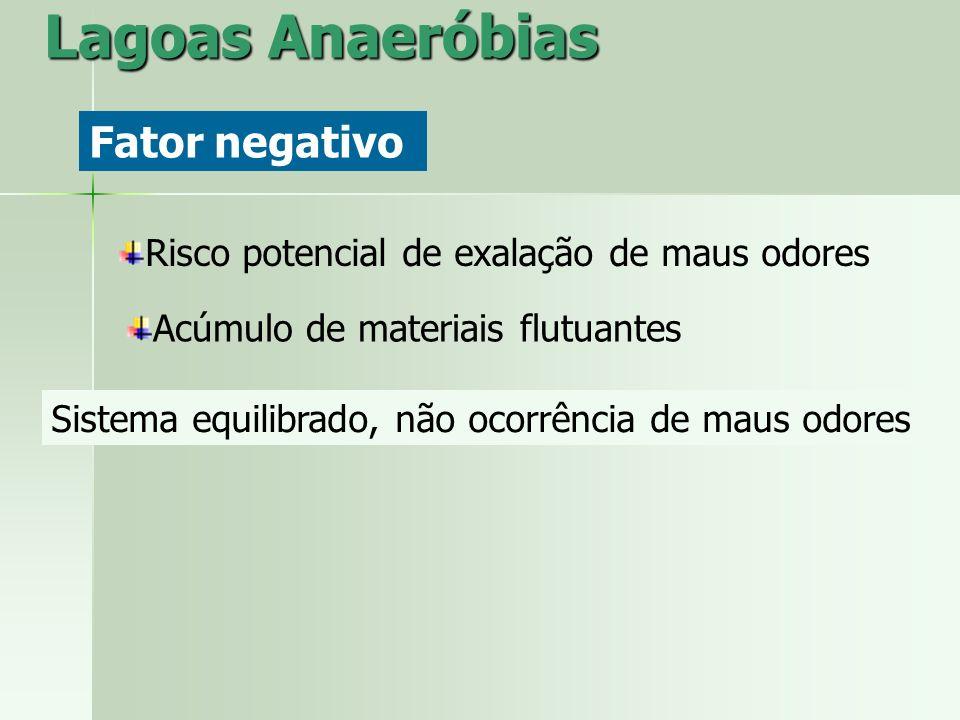 Lagoas Anaeróbias Fator negativo Risco potencial de exalação de maus odores Acúmulo de materiais flutuantes Sistema equilibrado, não ocorrência de mau