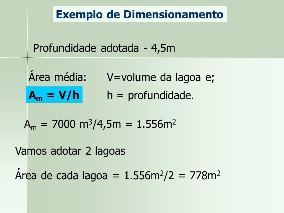 Exemplo de Dimensionamento Profundidade adotada - 4,5m Área média: V=volume da lagoa e; h = profundidade. A m = V/h A m = 7000 m 3 /4,5m = 1.556m 2 Va