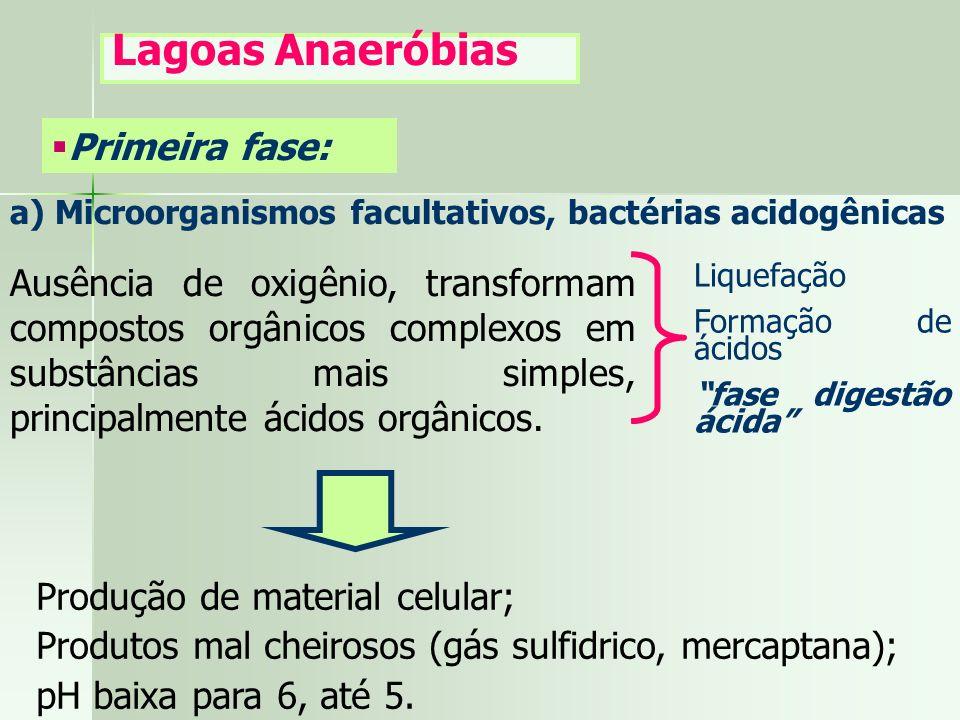 a) Microorganismos facultativos, bactérias acidogênicas Ausência de oxigênio, transformam compostos orgânicos complexos em substâncias mais simples, p