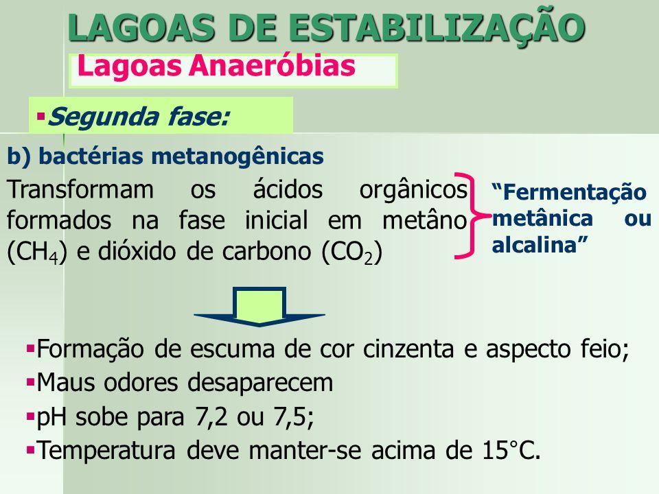 b) bactérias metanogênicas Transformam os ácidos orgânicos formados na fase inicial em metâno (CH 4 ) e dióxido de carbono (CO 2 ) Fermentação metânic