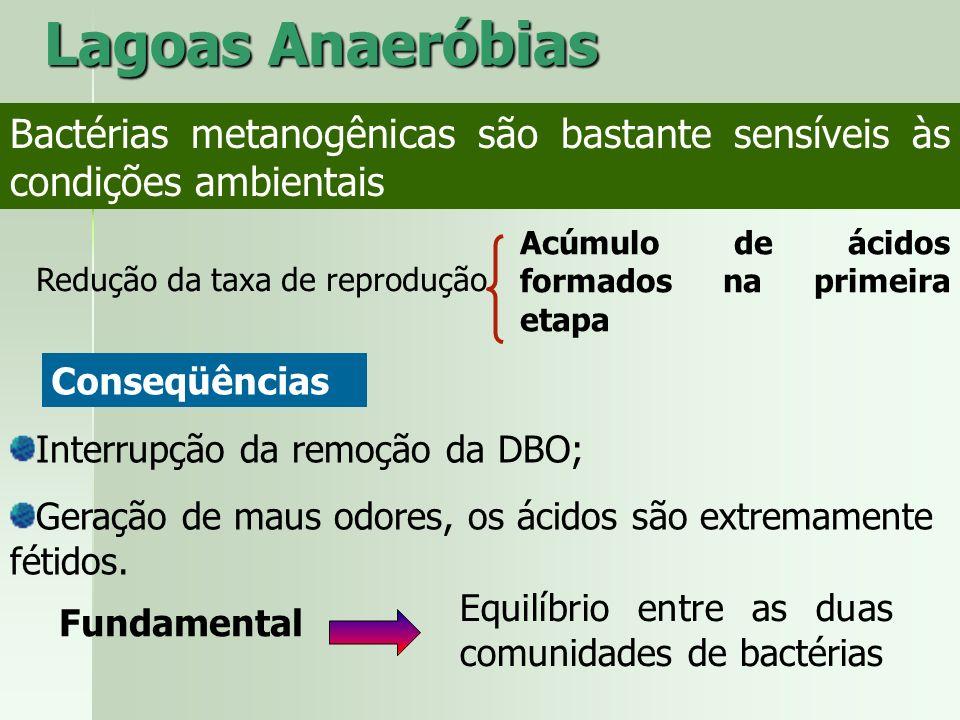 Bactérias metanogênicas são bastante sensíveis às condições ambientais Redução da taxa de reprodução Acúmulo de ácidos formados na primeira etapa Lago