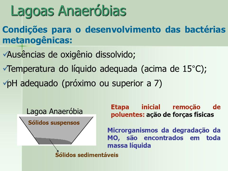 Lagoas Anaeróbias Condições para o desenvolvimento das bactérias metanogênicas: Ausências de oxigênio dissolvido; Temperatura do líquido adequada (aci