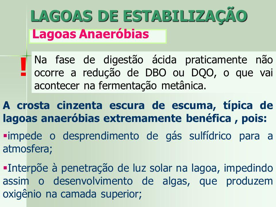 LAGOAS DE ESTABILIZAÇÃO Lagoas Anaeróbias Na fase de digestão ácida praticamente não ocorre a redução de DBO ou DQO, o que vai acontecer na fermentaçã