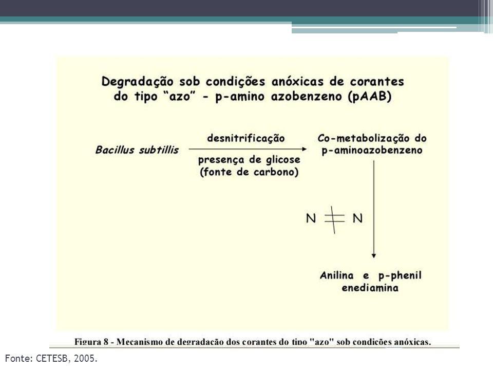 Fonte: CETESB, 2005.