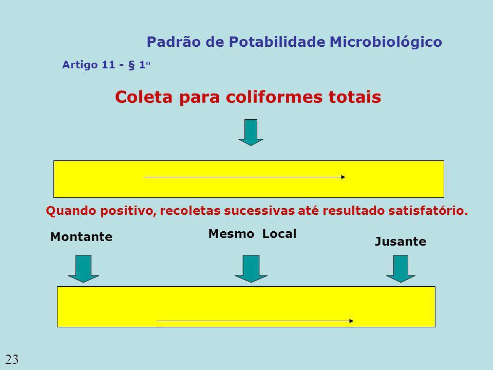 23 Coleta para coliformes totais Mesmo Local Montante Jusante Quando positivo, recoletas sucessivas até resultado satisfatório. Artigo 11 - § 1 o Padr