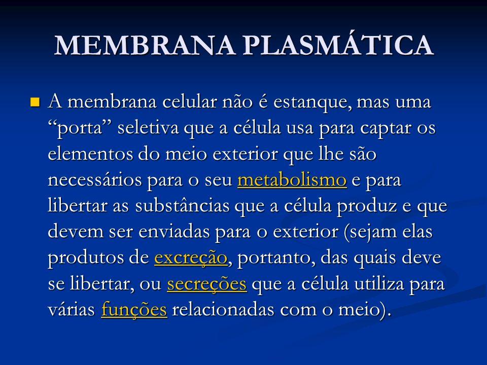 MEMBRANA PLASMÁTICA A membrana celular não é estanque, mas uma porta seletiva que a célula usa para captar os elementos do meio exterior que lhe são n