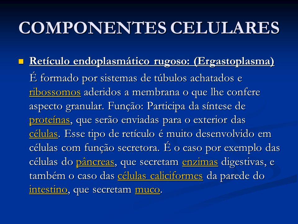 COMPONENTES CELULARES Retículo endoplasmático rugoso: (Ergastoplasma) Retículo endoplasmático rugoso: (Ergastoplasma) É formado por sistemas de túbulo