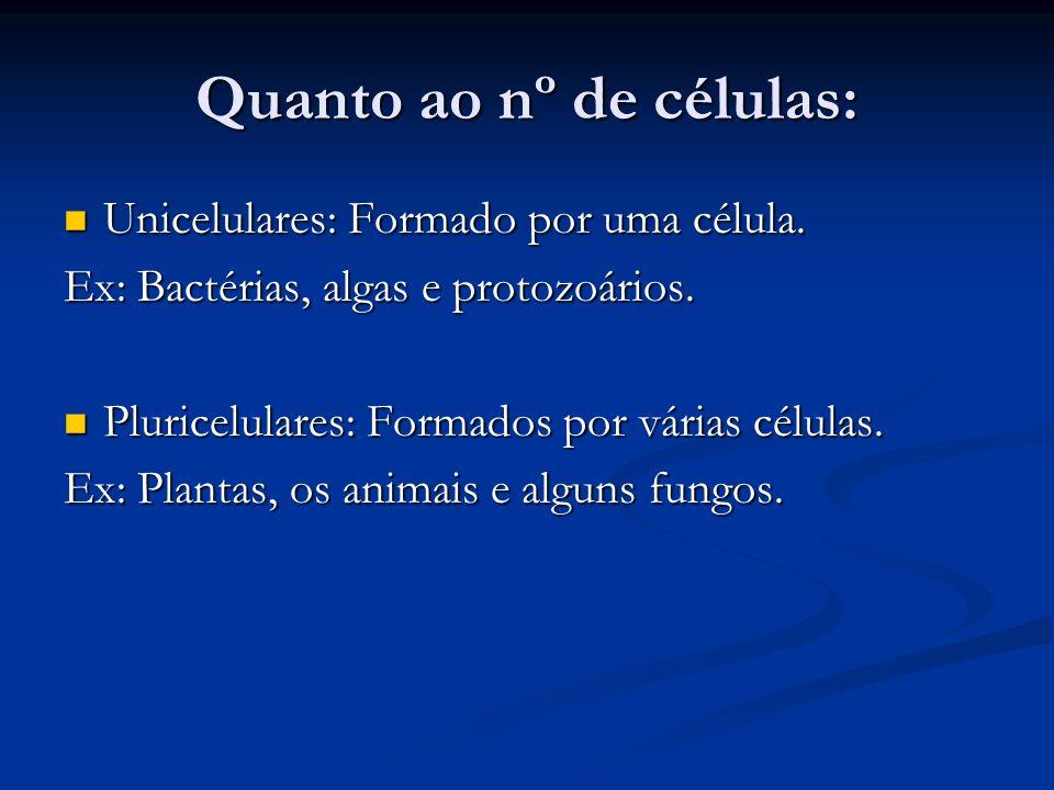 Quanto ao nº de células: Unicelulares: Formado por uma célula. Unicelulares: Formado por uma célula. Ex: Bactérias, algas e protozoários. Pluricelular
