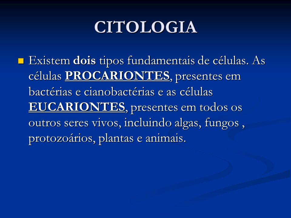 CITOLOGIA Existem dois tipos fundamentais de células. As células PROCARIONTES, presentes em bactérias e cianobactérias e as células EUCARIONTES, prese