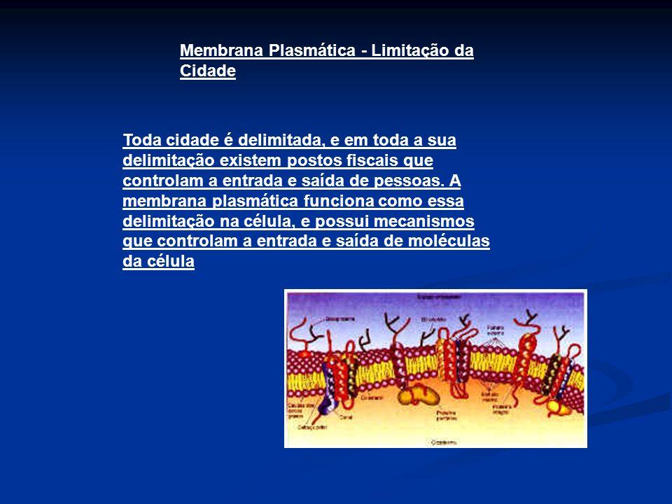 Membrana Plasmática - Limitação da Cidade Toda cidade é delimitada, e em toda a sua delimitação existem postos fiscais que controlam a entrada e saída