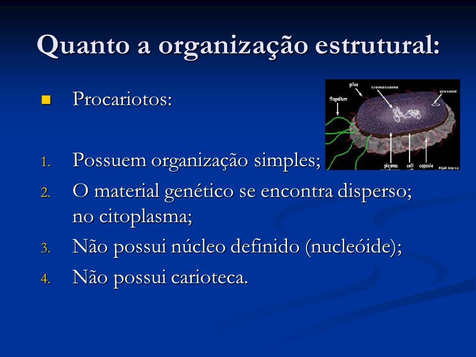 Quanto a organização estrutural: Procariotos: Procariotos: 1. Possuem organização simples; 2. O material genético se encontra disperso; no citoplasma;