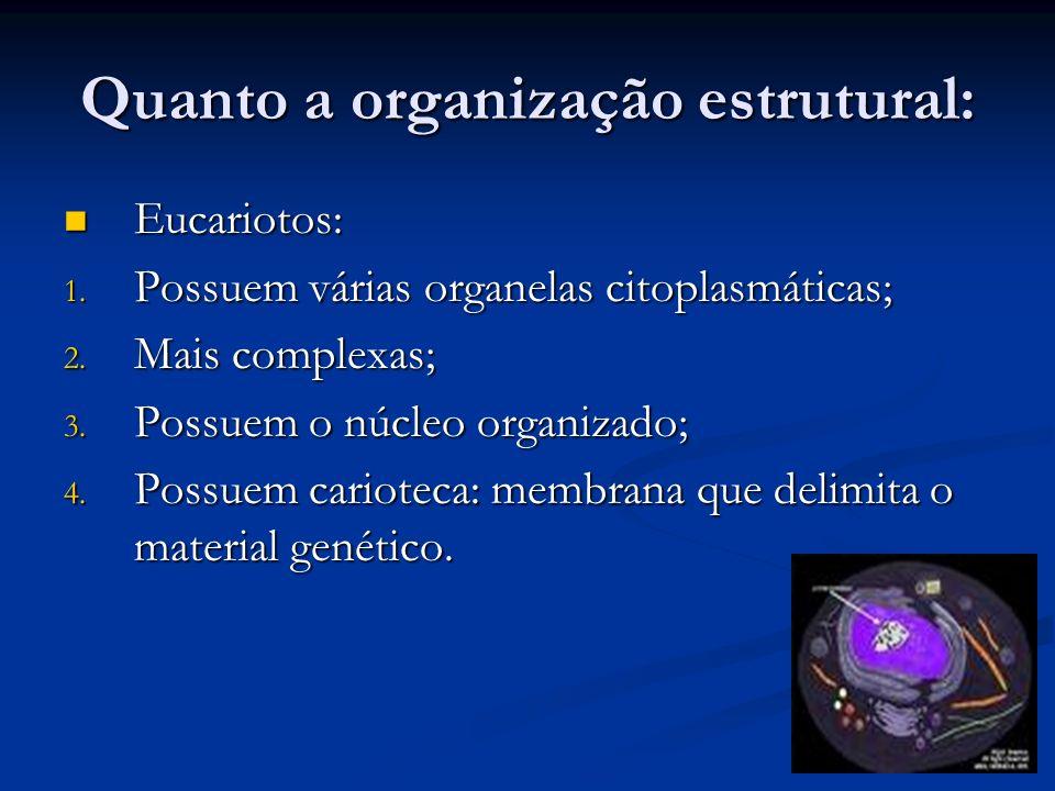 Quanto a organização estrutural: Eucariotos: Eucariotos: 1. Possuem várias organelas citoplasmáticas; 2. Mais complexas; 3. Possuem o núcleo organizad