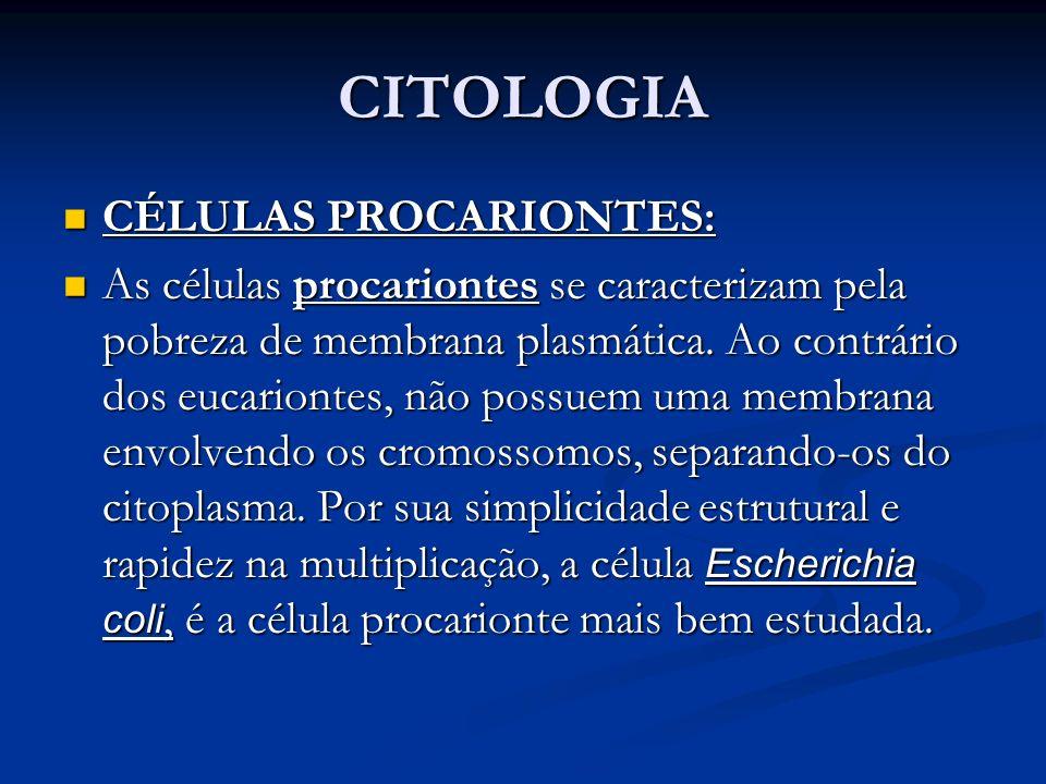 CITOLOGIA CÉLULAS PROCARIONTES: CÉLULAS PROCARIONTES: As células procariontes se caracterizam pela pobreza de membrana plasmática. Ao contrário dos eu