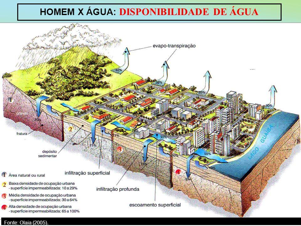 HOMEM X ÁGUA: DISPONIBILIDADE DE ÁGUA Fonte: Olaia (2005).