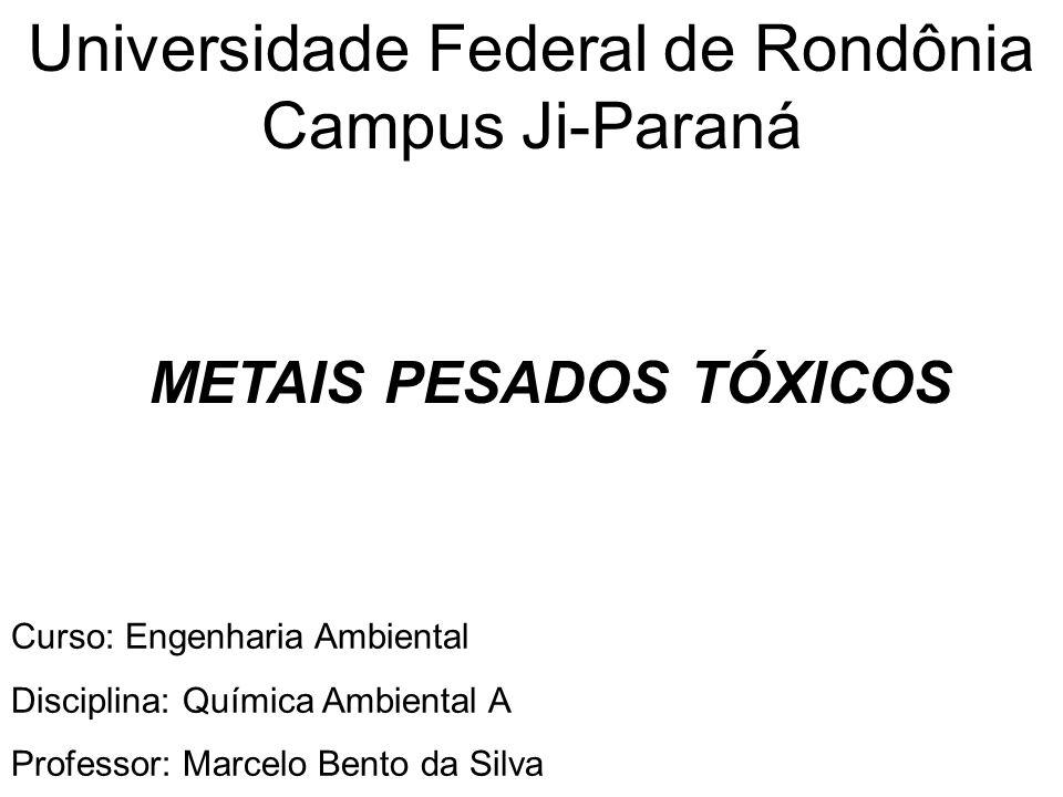 Universidade Federal de Rondônia Campus Ji-Paraná METAIS PESADOS TÓXICOS Curso: Engenharia Ambiental Disciplina: Química Ambiental A Professor: Marcel