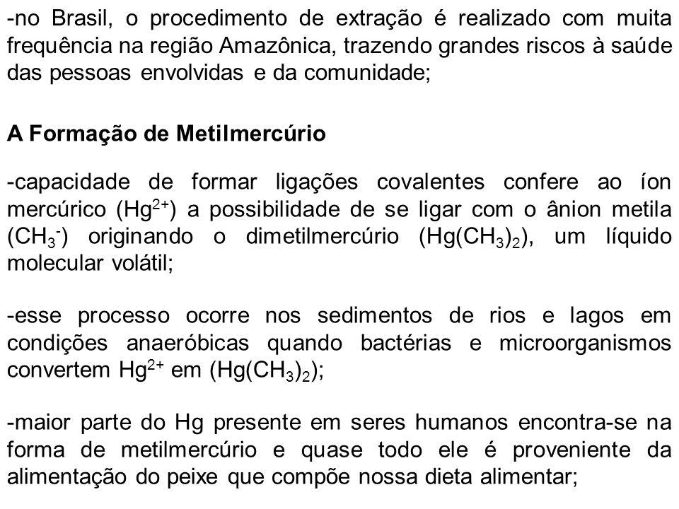 Toxicidade do Metilmercúrio -é solúvel em lipídeos e tem afinidade por átomos de S, possuindo tempo de meia vida t 1/2 = 70 dias; Outras Fontes de Metilmercúrio -utilização na agricultura (fungicida) ou industria de tinta; -processo de lixiviação nas rochas e nos solos sendo introduzidos nos sistemas aquáticos por processos naturais; -áreas devastadas da floresta Amazônica, ou seja, exposição do solo pode vir a introduzir uma quantidade considerável do elemento para o ambiente;