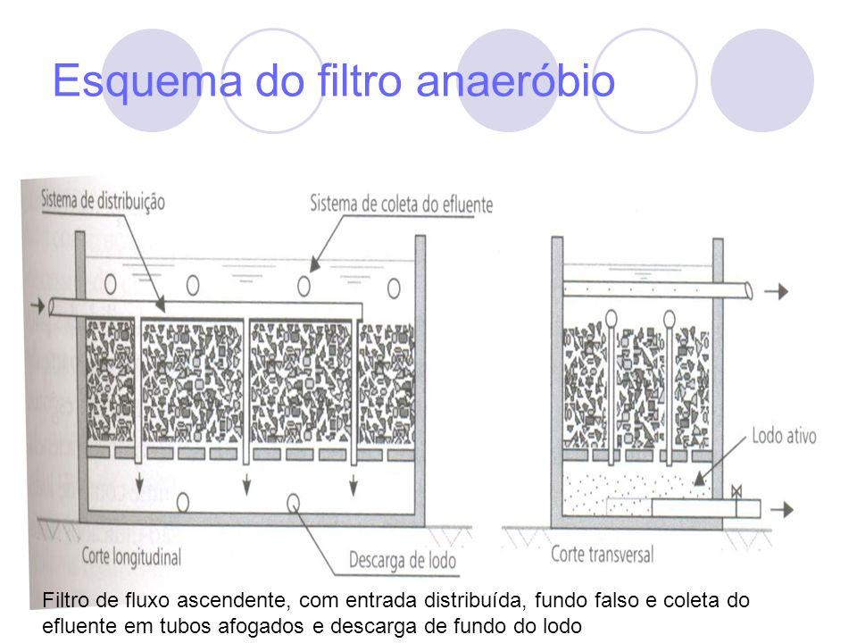 Esquema do filtro anaeróbio Filtro de fluxo ascendente, com entrada distribuída, fundo falso e coleta do efluente em tubos afogados e descarga de fund