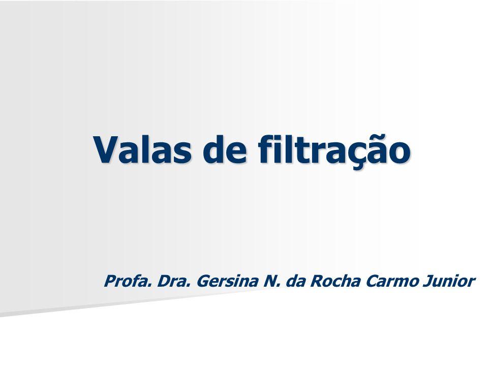 Valas de filtração Profa. Dra. Gersina N. da Rocha Carmo Junior