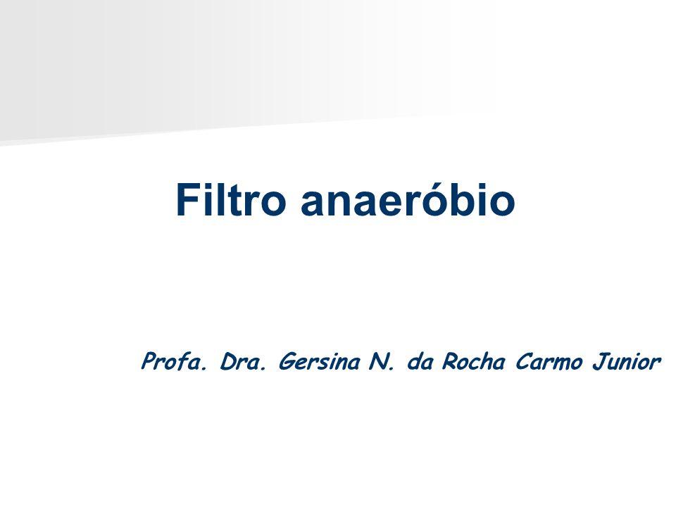Filtro anaeróbio Profa. Dra. Gersina N. da Rocha Carmo Junior