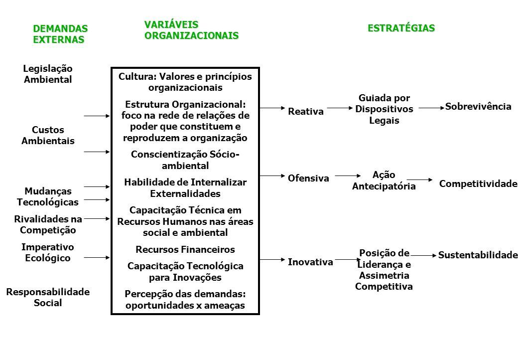 Cultura: Valores e princípios organizacionais Estrutura Organizacional: foco na rede de relações de poder que constituem e reproduzem a organização Co