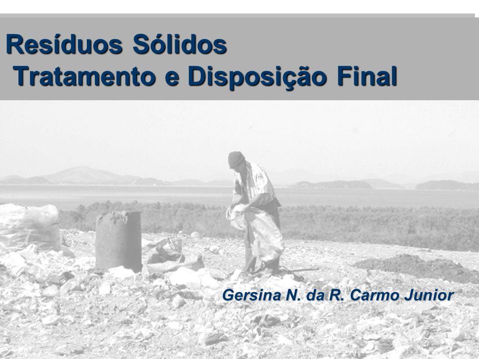 Gersina N. da R. Carmo Junior Resíduos Sólidos Tratamento e Disposição Final