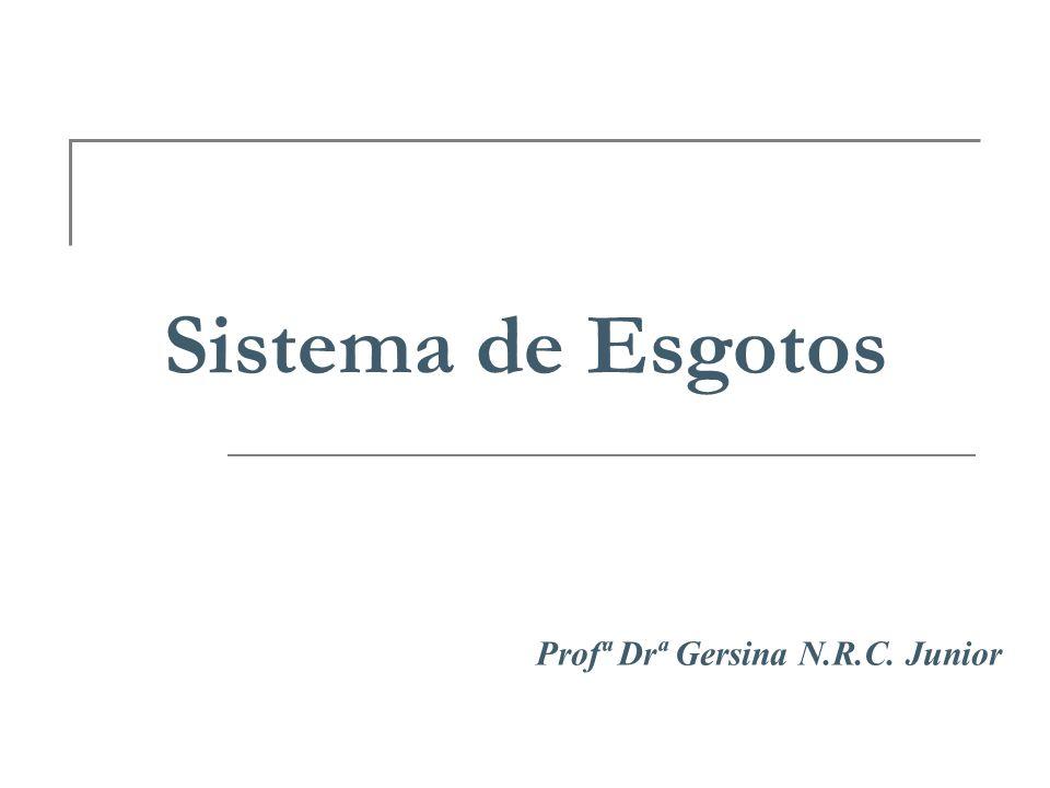 Sistema de Esgotos Profª Drª Gersina N.R.C. Junior