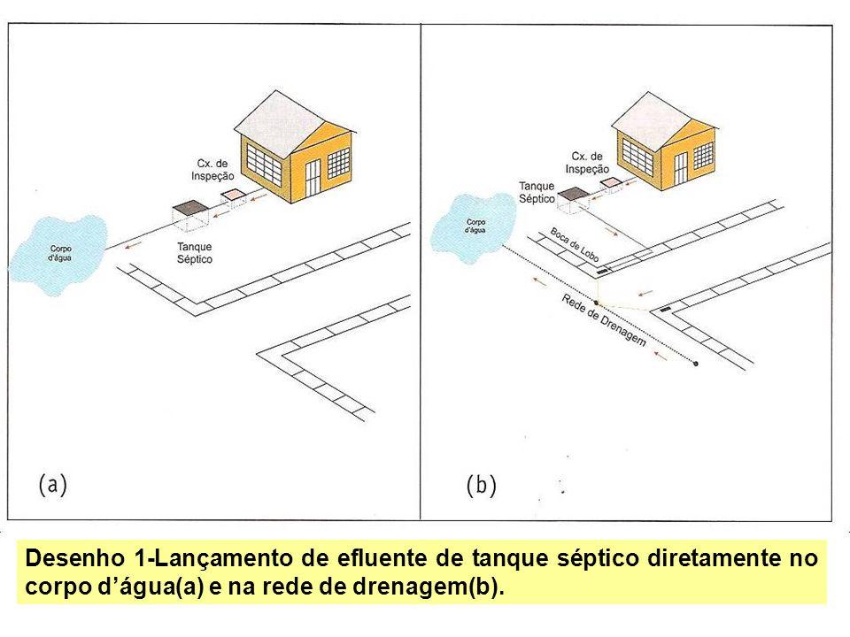 Desenho 1-Lançamento de efluente de tanque séptico diretamente no corpo dágua(a) e na rede de drenagem(b).