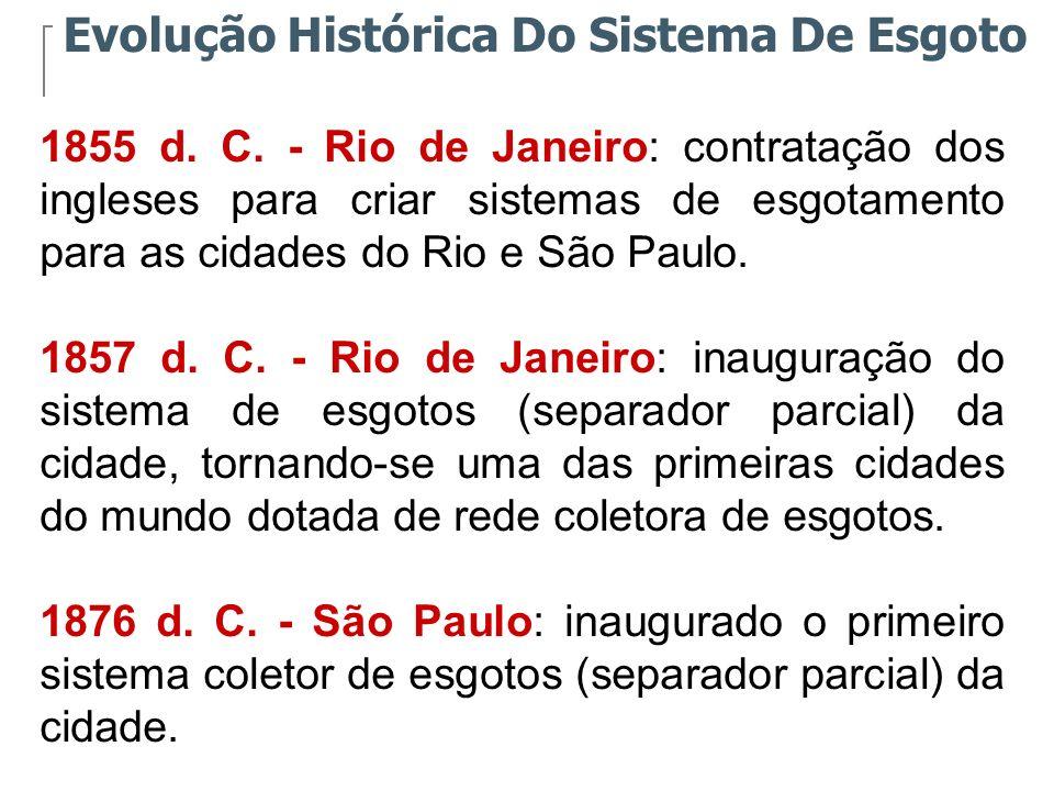 A evolução da infra-estrutura urbana que ocorreu no final do século XIX e início do século XX, foi sendo descaracterizada, já que a ampliação dos sistemas de coleta de esgoto não acompanhou o crescimento da população na maioria das cidades brasileiras.