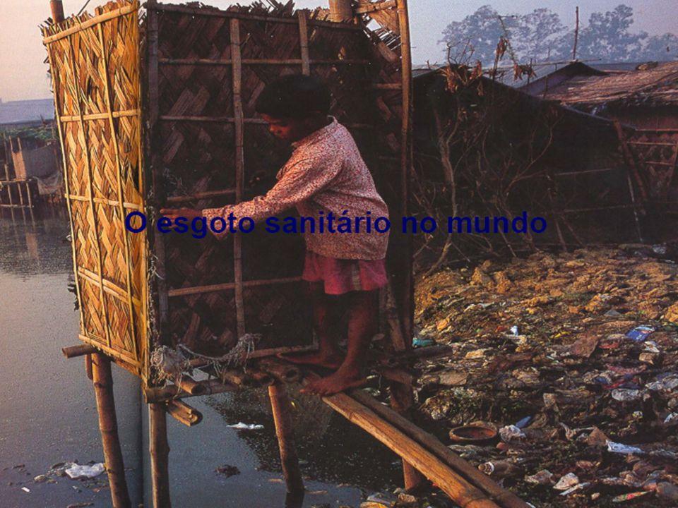 Segundo a ONU, morrem a cada dia, 25 mil pessoas no mundo, na maioria crianças, em virtude de doenças provocadas pela água poluída.