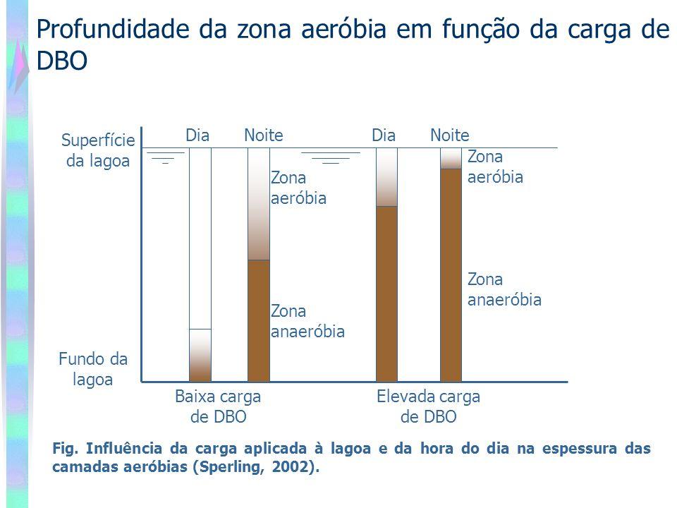 Profundidade da zona aeróbia em função da carga de DBO DiaNoiteDiaNoite Superfície da lagoa Fundo da lagoa Baixa carga de DBO Elevada carga de DBO Zona aeróbia Zona anaeróbia Zona aeróbia Zona anaeróbia Fig.