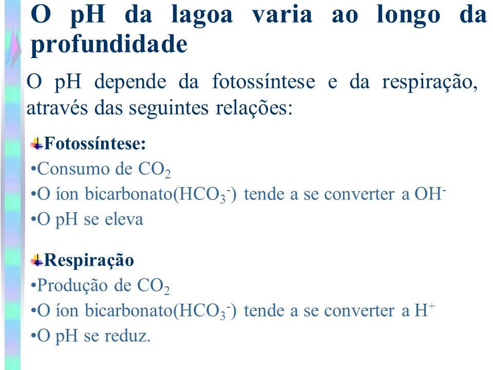 O pH da lagoa varia ao longo da profundidade O pH depende da fotossíntese e da respiração, através das seguintes relações: Fotossíntese: Consumo de CO
