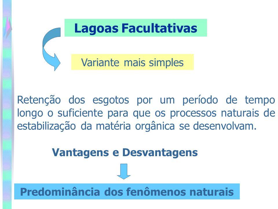 Lagoas Facultativas Variante mais simples Retenção dos esgotos por um período de tempo longo o suficiente para que os processos naturais de estabilização da matéria orgânica se desenvolvam.