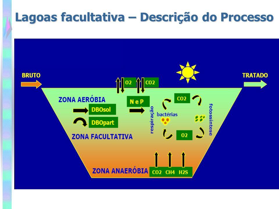 Taxa de aplicação superficial Carga orgânica por unidade de área Baseia-se na necessidade de se ter uma determinada área de exposição à luz solar na lagoa, para que o processo de fotossíntese ocorra.