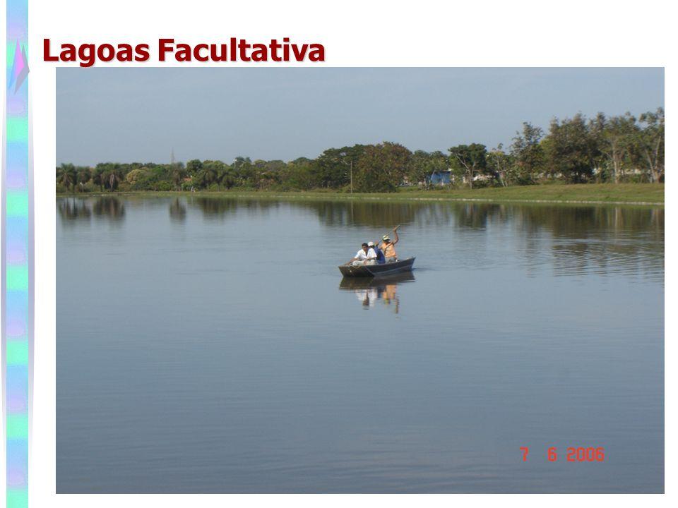Lagoas Facultativa