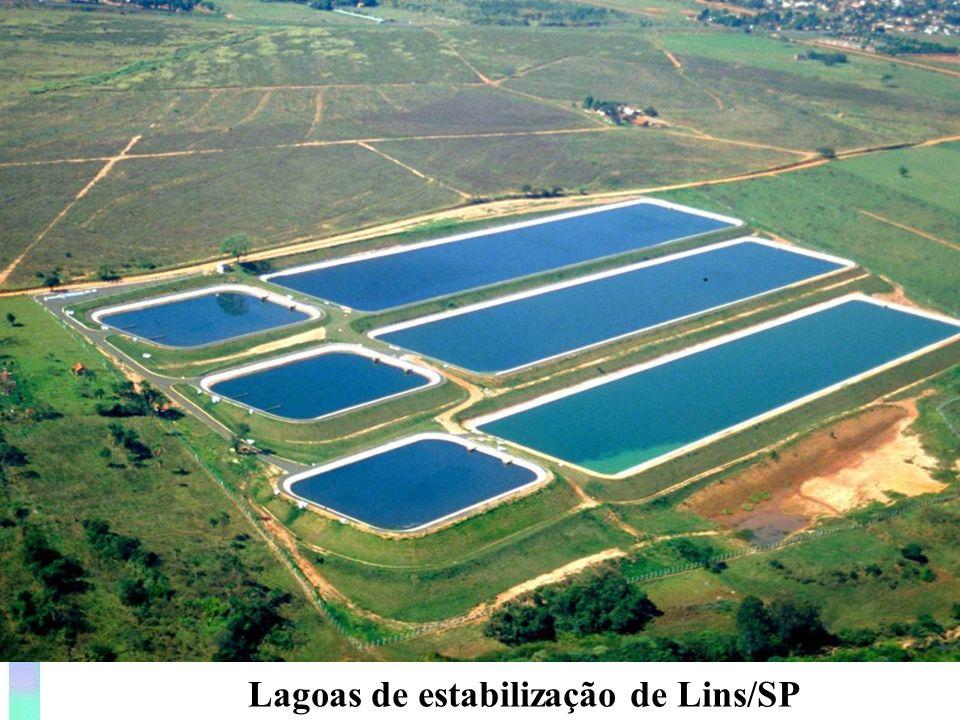 Geometria da lagoa (relação comprimento/largura) Importante critério, influência no regime hidráulico da lagoa.