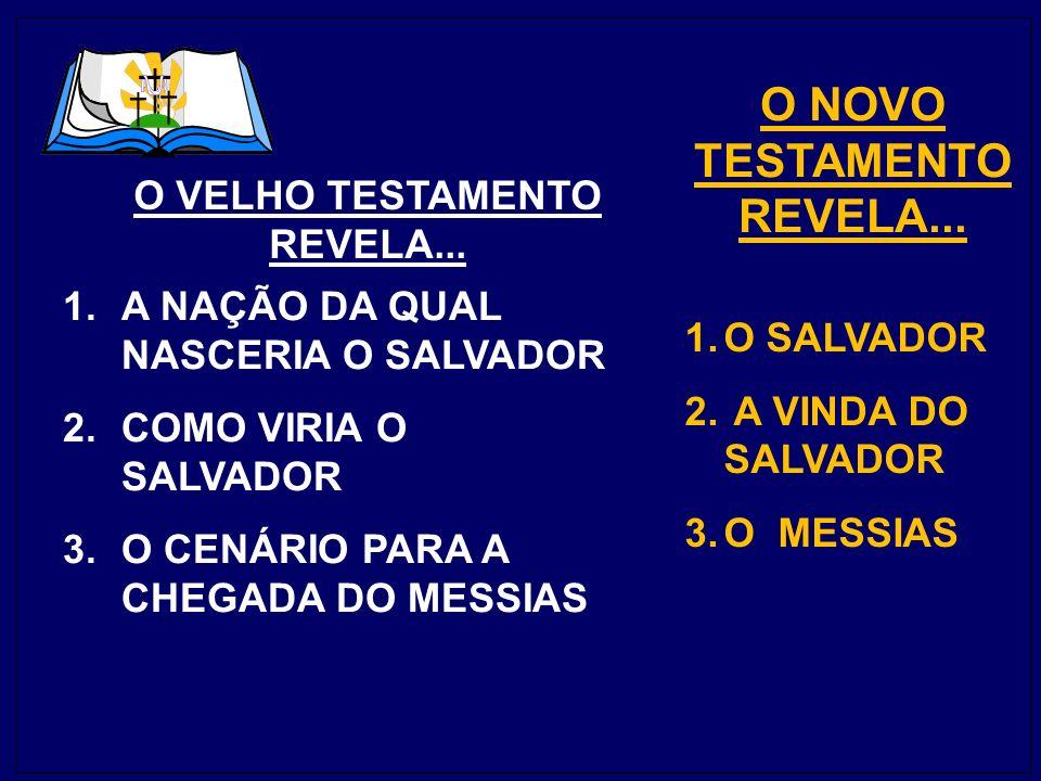 1.A NAÇÃO DA QUAL NASCERIA O SALVADOR 2.COMO VIRIA O SALVADOR 3.O CENÁRIO PARA A CHEGADA DO MESSIAS 1.O SALVADOR 2.